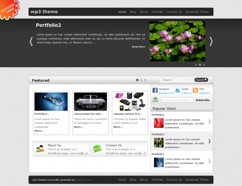 WP3 WordPress Theme