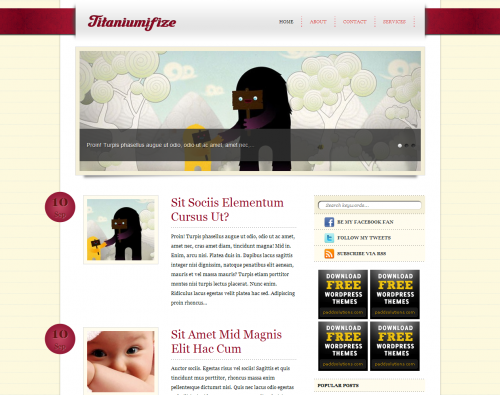 Titaniumifize wordpress theme