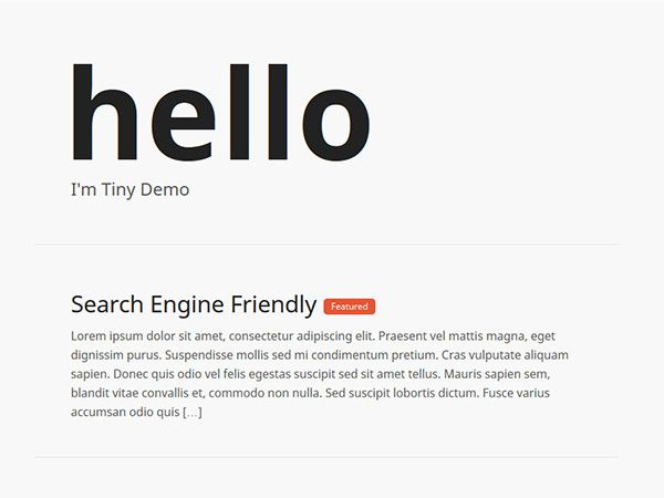 Tiny - WordPress Theme
